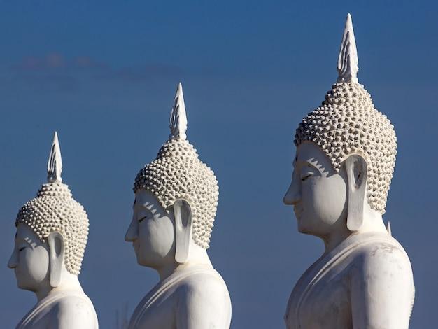 Buddha im tempel von thailand