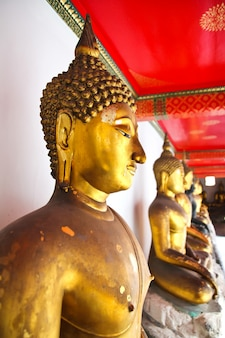 Buddha in wat pho temple sequentiell schön in bangkok, thailand.