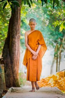 Buddhistische priester üben das gehen, üben das einrichten des atems.
