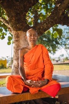 Buddhistischer mönch, der unter einem baum sitzt