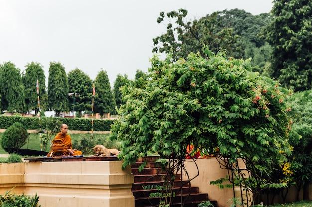 Buddhistischer mönch in der meditation mit beugendem hund auf dem gebiet des bodhi-baums im mahabodhi-tempel.