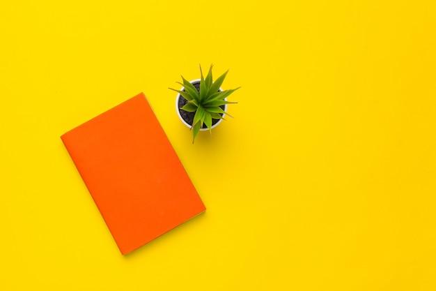 Bücher auf gelbem grund