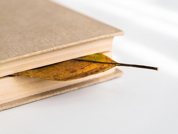 Bücher oder lehrbücher mit trockenem herbstlaub auf einem weißen tisch, draufsicht. konzept von schule, wissen und ausbildung.