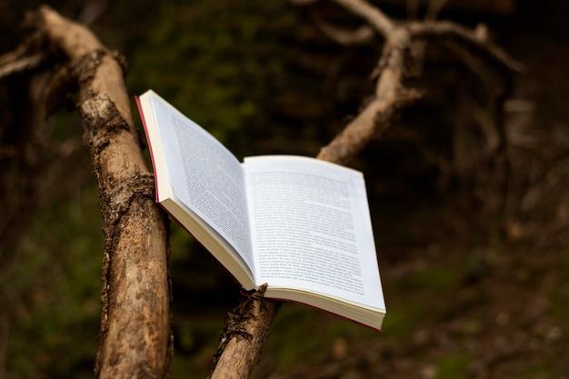 Bücher und fantasiestillleben
