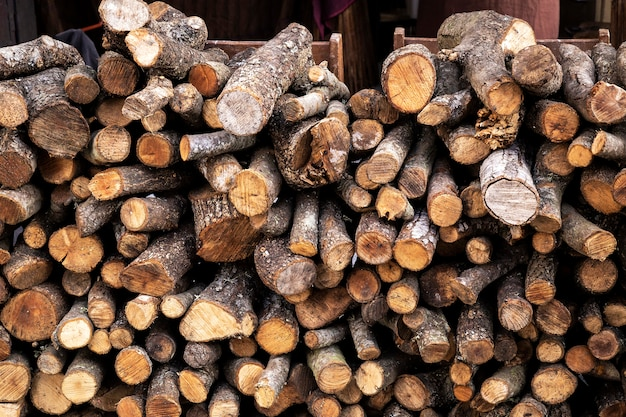 Bündel brennholz von den baumasten
