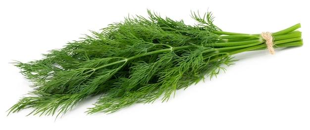 Bündel frischer grüner dill isoliert auf weißem hintergrund.