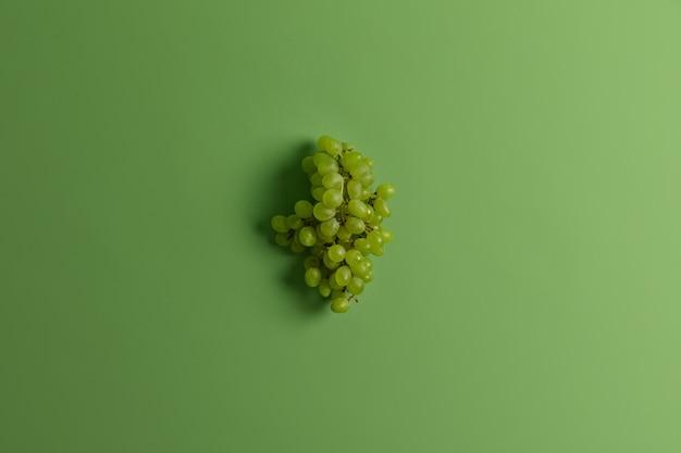 Bündel köstlicher grüner muskat-trauben zur herstellung von wein oder saft. geerntete saisonale sehr beliebte reiche frucht. monochromer schuss. selektiver fokus. platz für ihren text. gesunde ernährung, lebensmittelkonzept