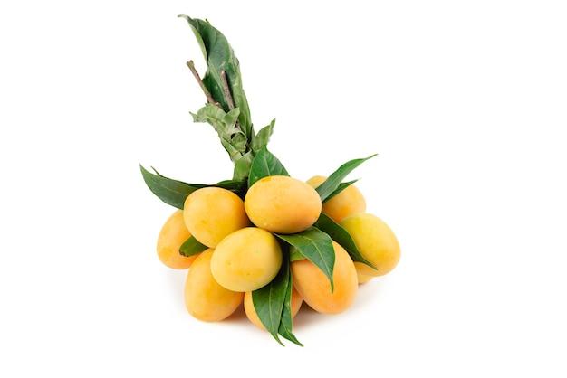 Bündel marian plum oder plum mango auf weiß.