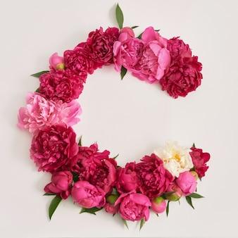 Bündel pfingstrosenblüten