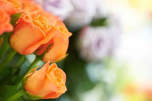 Bündel rote und orange schöne rosen