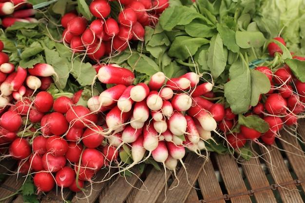 Bündel rote und weiße rettiche am markt