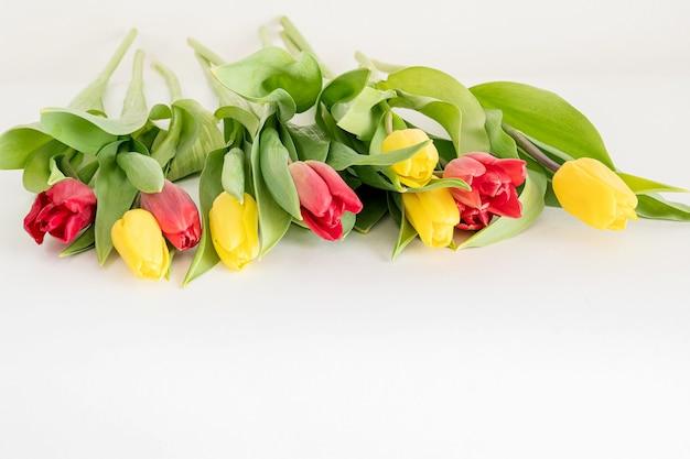 Bündel roter und gelber tulpenblumen verstreut auf weißem oberflächenfrühlingsblumenkonzept