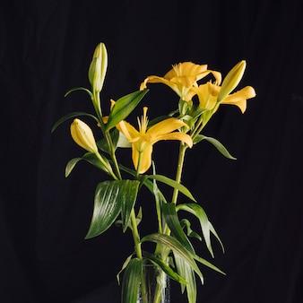 Bündel schöne frische blumen mit grünen blättern im vase