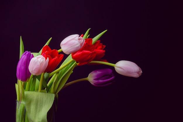 Bündel tulpen