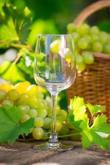 Bündel weiße trauben im korb und im leeren glas draußen