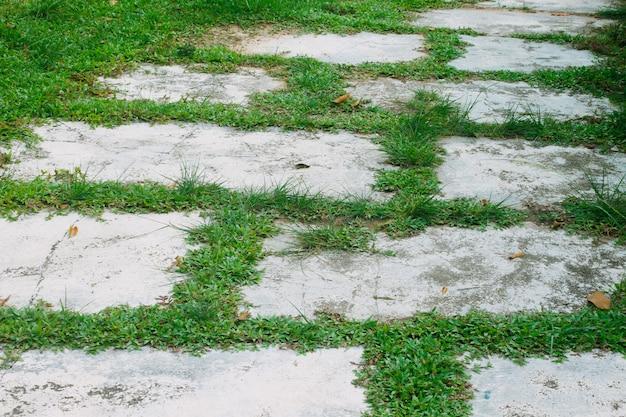 Bürgersteige mit zement und gras dekoriert.
