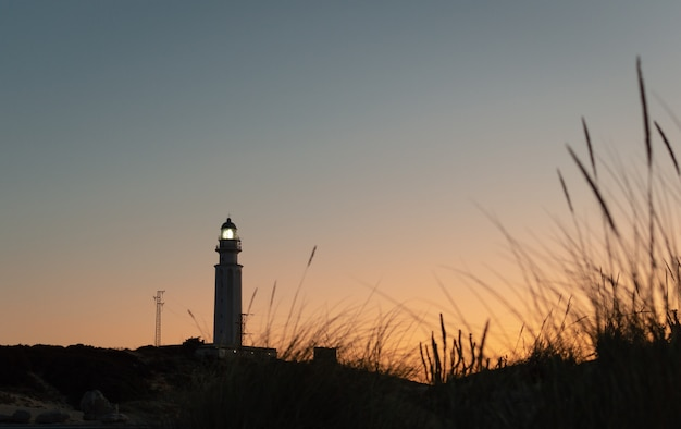 Büschel strandhafer im sonnenschein und ein leuchtturm ragen bei sonnenuntergang trafalgar, cadiz, spanien hoch.