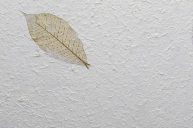 Büttenpapierbeschaffenheit mit aufbereiteten materialien, baumblättern und baumwollfasern.
