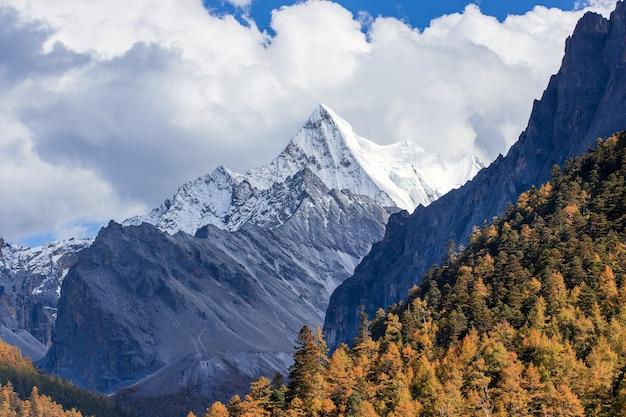 Bunt im herbstwald und im schneeberg im naturschutzgebiet yading, das letzte shangri la
