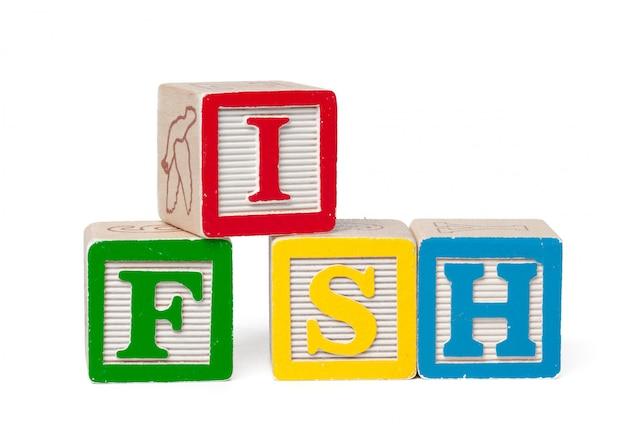 Bunte alphabetblöcke. wortfische getrennt auf weiß