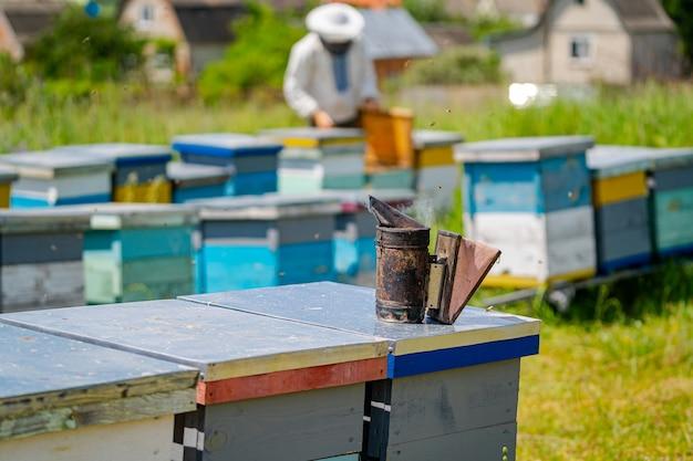 Bunte bienenstöcke auf einer wiese im sommer. bienenstöcke in einem bienenstand mit bienen, die zu den landebrettern fliegen. imkerei. bienenraucher im bienenstock.
