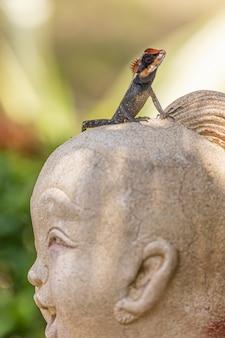 Bunte eidechse auf skulptur
