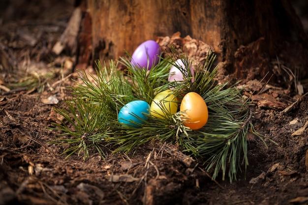 Bunte eier liegen im wald auf baumstumpf