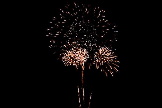 Bunte feuerwerke gegen einen himmel der dunklen nacht. feuerwerk für das neue jahr. schöne bunte feuerwerke zeigen auf dem städtischen see für feier an