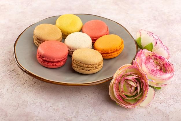 Bunte französische macarons der vorderansicht mit rosen auf der rosa keksfarbe des schreibtischkuchens