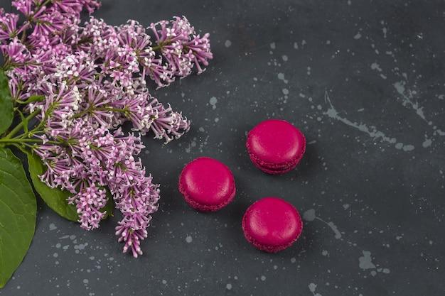 Bunte französische macarons plätzchen (makronen) mit lila niederlassung. dessert mit tee- oder kaffeepause.