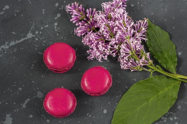 Bunte französische macarons plätzchen (makronen) mit lila niederlassung