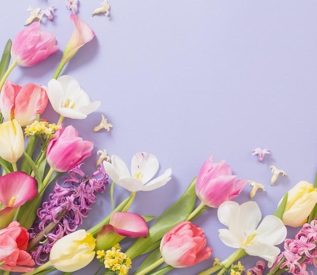 Bunte frühlingsblumen auf lila hintergrund