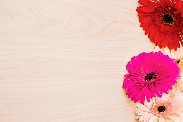 Bunte gerberablumen auf hölzernem schreibtisch