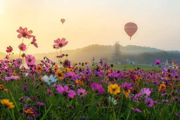Bunte heißluftballone am frühen morgen