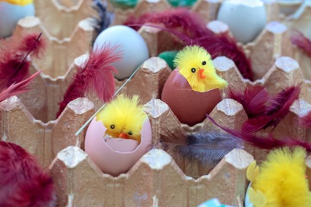 Bunte ostereier in einer cortonbox unter niedlichen spielzeughühnern und federn. osterdekor-konzept. nahaufnahmefoto