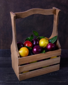 Bunte pflaumenfrucht in einem holzkorb auf dem schwarzen raum lokalisiert