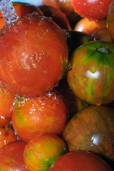 Bunte tomaten werden in einem strom von sauberem wasser gewaschen nahaufnahme makrofotografie