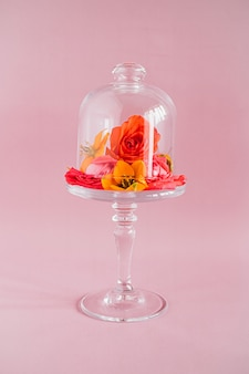 Bunte tropische blumenzusammensetzung auf glaskuchenstand auf rosa, tendenzzusammensetzung