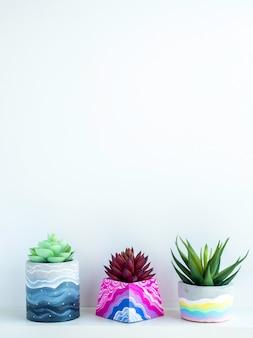 Bunte verschiedene diy-betontöpfe mit schönen grün-roten sukkulenten auf weißem holzregal an weißer wand mit kopienraum, vertikaler stil. drei einzigartige bemalte zementpflanzgefäße.