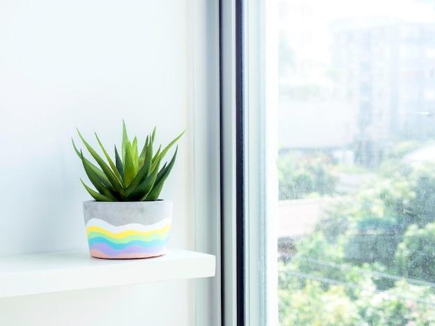Bunter diy runder betontopf mit grüner sukkulente auf einem weißen holzregal an weißer wand in der nähe von glasfenster mit kopierraum. einzigartiger regenbogenfarben lackierter zementübertopf.