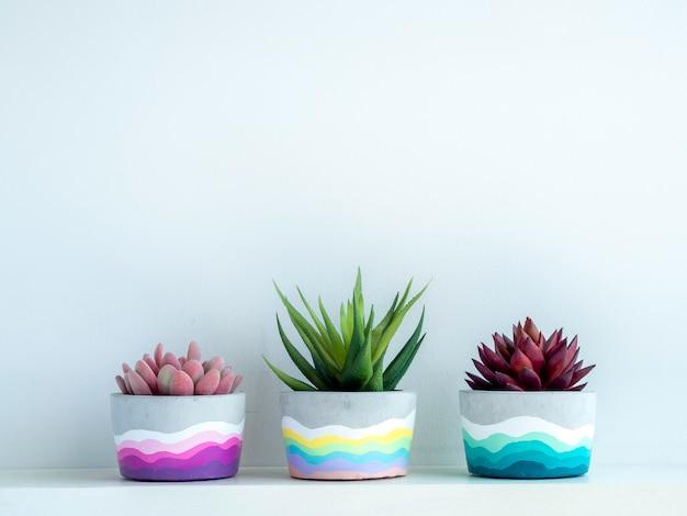 Bunter diy runder betontopf mit schönen grünen, rosa und roten sukkulenten auf einem weißen holzregal an weißer wand mit kopierraum. drei einzigartige bemalte zementpflanzgefäße.