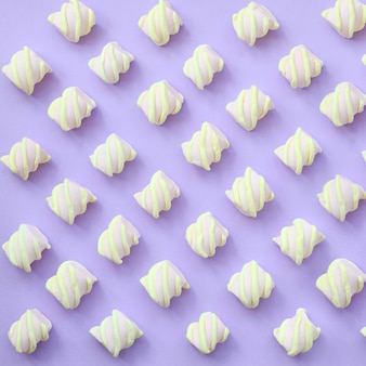 Bunter eibisch ausgebreitet auf violettem papier