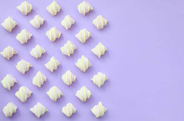 Bunter eibisch ausgebreitet auf violettem papierhintergrund. kreative pastell-texturen mit textfreiraum. minimal
