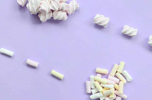 Bunter eibisch ausgebreitet auf violettem papierhintergrund