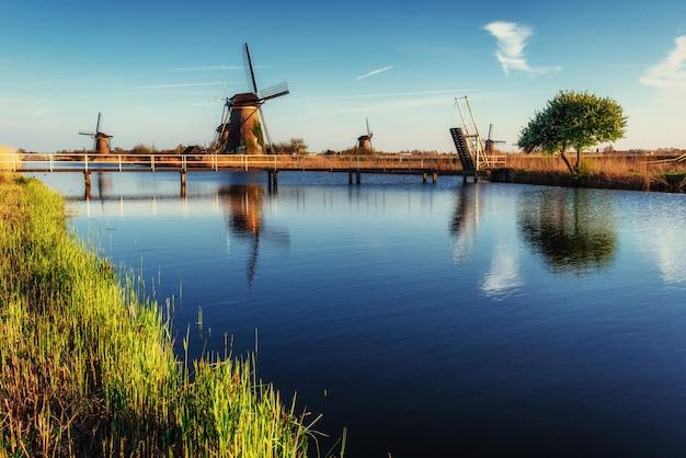 Bunter frühlingstag mit traditionellem holländischem windmühlenkanal