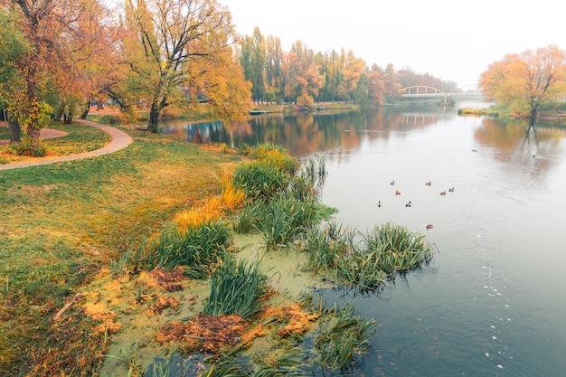 Bunter herbstpark. herbstbäume mit gelb verlässt im herbstpark. belgorod. russland.