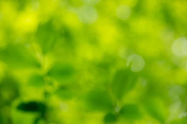 Bunter hintergrund in grünen farben