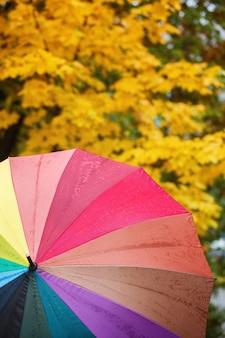 Bunter mehrfarbiger regenschirm auf gelbem herbstlaub. herbst natur