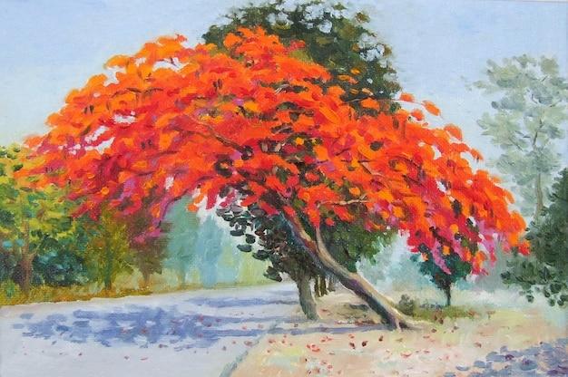 Bunter pfauenblumenbaum am straßenrand und im sonnenlicht