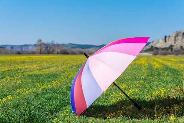 Bunter regenschirm gesetzt auf das gras an einem sonnigen tag.